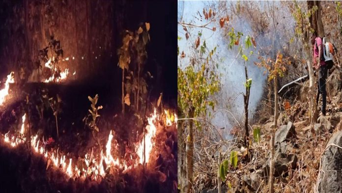Similipal forest fire forest division in Karanjia to battle flames